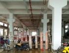 三乡茅湾工业区1300平方一楼标准厂房出租