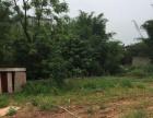 平南罗合大洲村 土地 出售