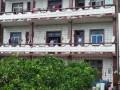 1300平方米果园+菜地的3层农民房出售(不限购)