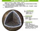 除甲醛土方法多,要明辨真伪!贵州银蕨环保教你如何除甲醛