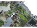 中山园林绿化设计公司,技术到位收费标准