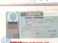 葡萄牙 西班牙 匈牙利 荷兰 瑞士 意大利旅游签证