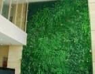 北京仿真植物墙批发