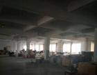 皋埠 人民东路漫池路 厂房 1300平米