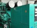 常德本地发电机出租厂商,出租50-1600W机组
