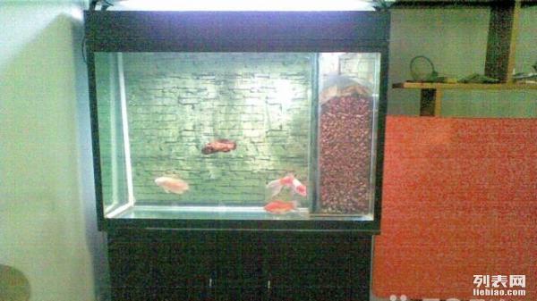 我的鱼缸是侧滤想改上滤,8000l水泵,该用多大面积多高