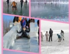 青湖御园 滑冰雪新惠利