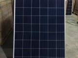 天合Q1多晶260W-310W太阳能组件家用发电板