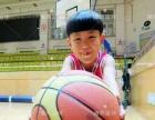 雏鹰篮球训练基地