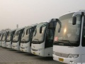 本月特惠、租车超低价、旅游包车、商务接送、租赁服务