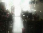 新城区 石龙汽车站 酒楼餐饮 商业街卖场