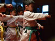 高桥青少年散打跆拳道防身专业培训