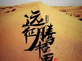 征战腾格里 沙漠露营三天两晚