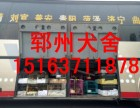 桂林郓州猎犬养殖基地长年出售马犬