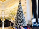 圣诞节特卖新款大型藤条挂枝普通款圣诞树平安树圣诞裸树