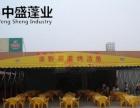 定制大型工厂储物仓库帐篷,夜市大排档活动挡雨棚