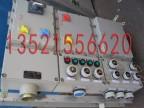 北京厂家供应防爆检修箱 防爆插座箱 防爆动力配电箱图片