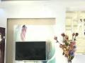 楚王城 紫荆花园 电梯单间精装修 采光通风 户型方正