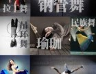 零基础舞蹈培训,网络主播网红舞蹈培训,钢管舞表演培训