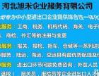 河北旭禾国际货运代理有限公司