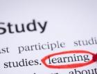 迎元旦倒计时,开发区山木培训少儿英语课程钜惠进行中