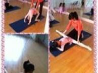 杨浦区五角场慧爵舞蹈培训《中国舞,芭蕾,民族》