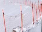 鄂尔多斯批发滑雪场专用安全网网杆滑雪场设施