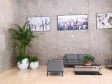 写字楼办公绿植物租摆养护