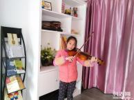 西丽琴行/专业琴行/专业架子鼓 钢琴 舞蹈 吉他 小提琴
