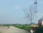 洋洋房产 河西张庄子附近大面积场地出租