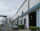 东区白沙湾单一层钢结构6000方厂房出租