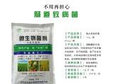 地衣芽孢杆菌水质净化制作生物有机肥t添加i功能菌