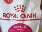 Royal Canin-猫粮