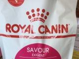 Royal Canin-猫粮