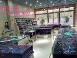 南昌定做鱼缸 专业承接制作各种大中型鱼缸 海鲜池、水族工程