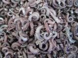 供应 章鱼尾尖 八爪鱼 冰鲜 粗加工 野生鲜活冷冻海鲜