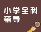 重庆小学课外辅导班 四年级数学 五年级数学补习