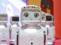 智能机器人表演 鲸鱼岛海洋球 春节卡通鸡 彩色跑
