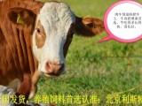 内蒙地区利斯特品牌肉牛专用饲料肥牛王,吃得多长得快