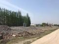 闵行华宁路20亩空地出租 适合工程机械及各类堆放