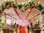 婚礼搭建与设计一条龙服务全程价格面议