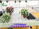 四川温室大棚自动移动潮汐育苗床生产厂家