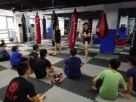天津寒假班散打培训-南开寒假班成人少儿散打培训