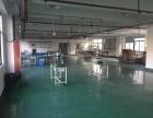 西湖三墩 厂房出租 700到1100方 仓库 生产