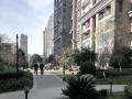 禹州天镜华侨城二期 温馨精装单间 高品质服务 无中介费