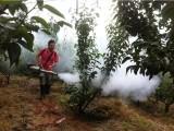 生产厂家直销 手提式脉冲烟雾机 农用弥雾机 水雾烟雾两用机