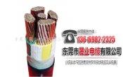 佛山成天泰电线电缆_购买有品质的成天泰电缆优选晟业电缆