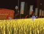 不一样的麦穗不一样的灯光展览发光金色麦穗出租出售
