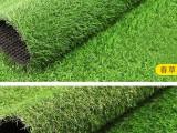 河南人造草坪幼儿园草坪仿真草坪厂家直销