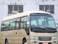 65座温州市最好青年双层旅游车出租租赁包车